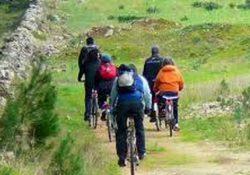 Salute e benessere. Andare in bici, un'attività anti-cancro: pedalare utile alla prevenzione delle malattie cardiovascolari, tumori e morte precoce.