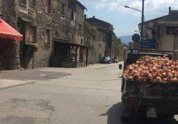 """ALIFE. Eccellenze Alifane"""", venerdì si festeggiano le cipolle e i fagioli di Alife."""