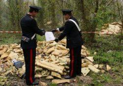 Venafro. Pregiudicato del napoletano sversa su un fondo agricolo privato materiali edili di risulta: denunciato dai Carabinieri.