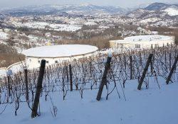 Sannio / Neve. Tutto il territorio coperto di neve, temperature gelide e scuole scuole: ma è un bene per gli uliveti e vigneti.