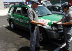 Frosolone. Buste per la spesa illegali, scattano controlli e sequestri dei Carabinieri Forestali.