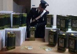 Isernia / Provincia. Vendono olio extravergine di oliva contraffatto, denunciati due commercianti: sequestrati 500 litri di sostanze oleose.