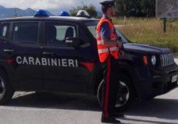 Isernia / Provincia. Conducente ubriaco provoca sinistro stradale: 40enne denunciato, patente ritirata e auto sottoposta a sequestro.