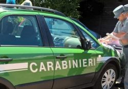 Roccasicura. Abbandono di rifiuti, scattano sanzioni da parte dei Carabinieri Forestali.