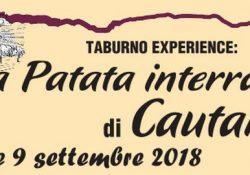 Cautano. La patata interrata: dal 7 al 9 settembre, workshop culinario, degustazioni, laboratorio sensoriale e mercato della terra.