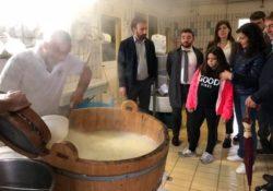 PRESENZANO / PIETRAVAIRANO. Politici in visita ad aziende zootecniche dell'Alto Casertano produttrici di mozzarelle e vini d'eccellenza.