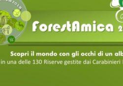 """Vastogirardi / Isernia. Forestamica 2018 – """"Il Mondo visto con gli occhi di un Albero"""":"""