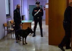 Isernia / Provincia. Progetto scuole sicure, controlli straordinari dei Carabinieri con l'impiego l'unità cinofila antidroga del Nucleo di Chieti.