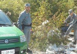 Isernia / Provincia. Carabinieri Forestali impegnati al contrasto dell'abusivismo edilizio e dell'abbandono dei rifiuti.