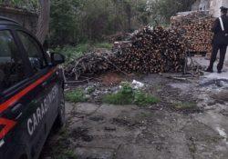Agnone. Furto di legna: i Carabinieri denunciano una persona.
