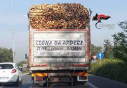 Caserta / Provincia. Illegal logging: controlli per prevenire e reprimere l'introduzione, da circuito nazionale e internazionale, di legna frutto di disboscamento illegale.