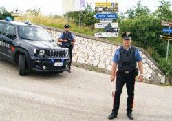 Tocco Caudio / Ceppaloni. Sul balcone dell'abitazione piantine di marijuana: perquisizioni, denunce ed arresti dei carabinieri.