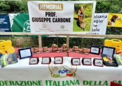 """AILANO / MONDRAGONE. Prima edizione del """"Memorial Prof. Giuseppe Carbone"""", gara amatoriale per cani sulla gara al cinghiale."""